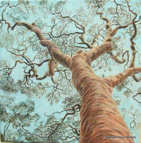 300mmx300mm  Acrylic on Canvas- Tree Study